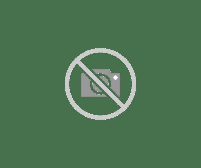 Bacova Gardens 10323 Botanical Horizontal Wall Mounted Mailbox