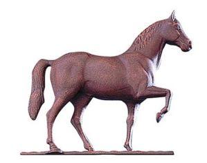 horse-rust-wv